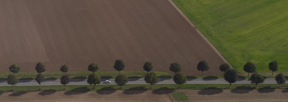 Suprojektuotų žemės sklypų paženklinimas ir kadastro duomenų bylų parengimas bei kadastro duomenų tikslinimas
